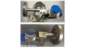 Pressure Transmitter / Diaphragm Seal / Capillary Services